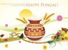 Pongal/Makar Sankranti Celebrations 2017